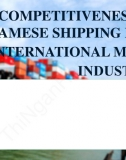 Slide thuyết trình - The competitiveness of Vietnamese shipping fleet in the international maritime industry